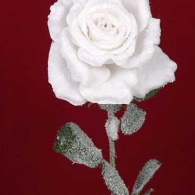 Groothandel besneeuwde witte roos 66 cm speelgoed kopen