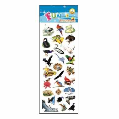 Groothandel kinder vogels stickers speelgoed kopen