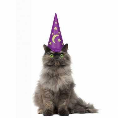 Groothandel paarse tovenaarshoed voor katten speelgoed kopen