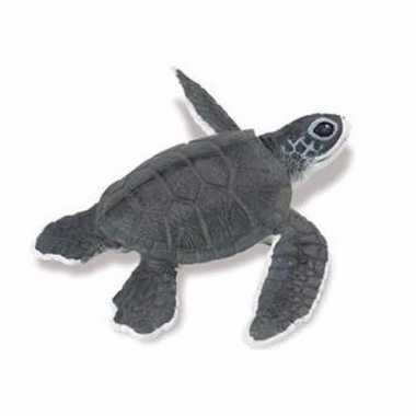 Groothandel speelgoed nep zee schildpad baby 14 cm kopen