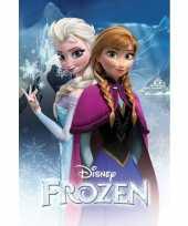 Groothandel frozen mini poster 61 x 91 cm speelgoed