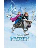 Groothandel frozen poster groot 61 x 91 5 cm speelgoed