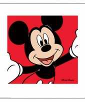 Groothandel kartonnen mickey mouse poster 40 x 40 cm speelgoed