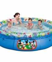 Groothandel kinder zwembad mickey mouse 244 cm speelgoed