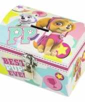 Groothandel paw patrol skye en everest mint roze speelgoed spaarpot met slotje voor meisjes