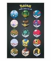 Groothandel pokeballs posters speelgoed