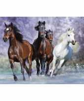 Groothandel poster galopperende paarden 61 x 91 5 cm speelgoed