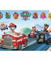 Groothandel poster paw patrol 61 x 91 5 cm speelgoed 10069900