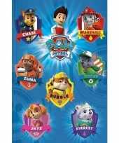 Groothandel poster paw patrol 61 x 91 5 cm speelgoed