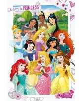 Groothandel prinsessen maxi poster 61 x 91 5 cm speelgoed
