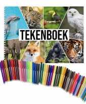 Groothandel schetsboek dieren liefhebbers a4 50 paginas met 50 viltstiften speelgoed