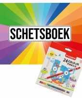 Groothandel schetsboek kleurenwaaier thema a4 50 paginas met 24 potloden speelgoed