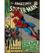 Groothandel the amazing spiderman poster 61 x 91 5 cm speelgoed