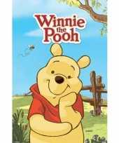 Groothandel winnie the pooh poster speelgoed